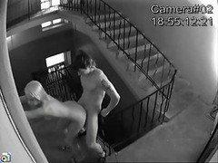 Couple baise devant la camera de…